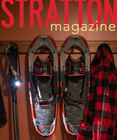 STRATTON HOLIDAY cover