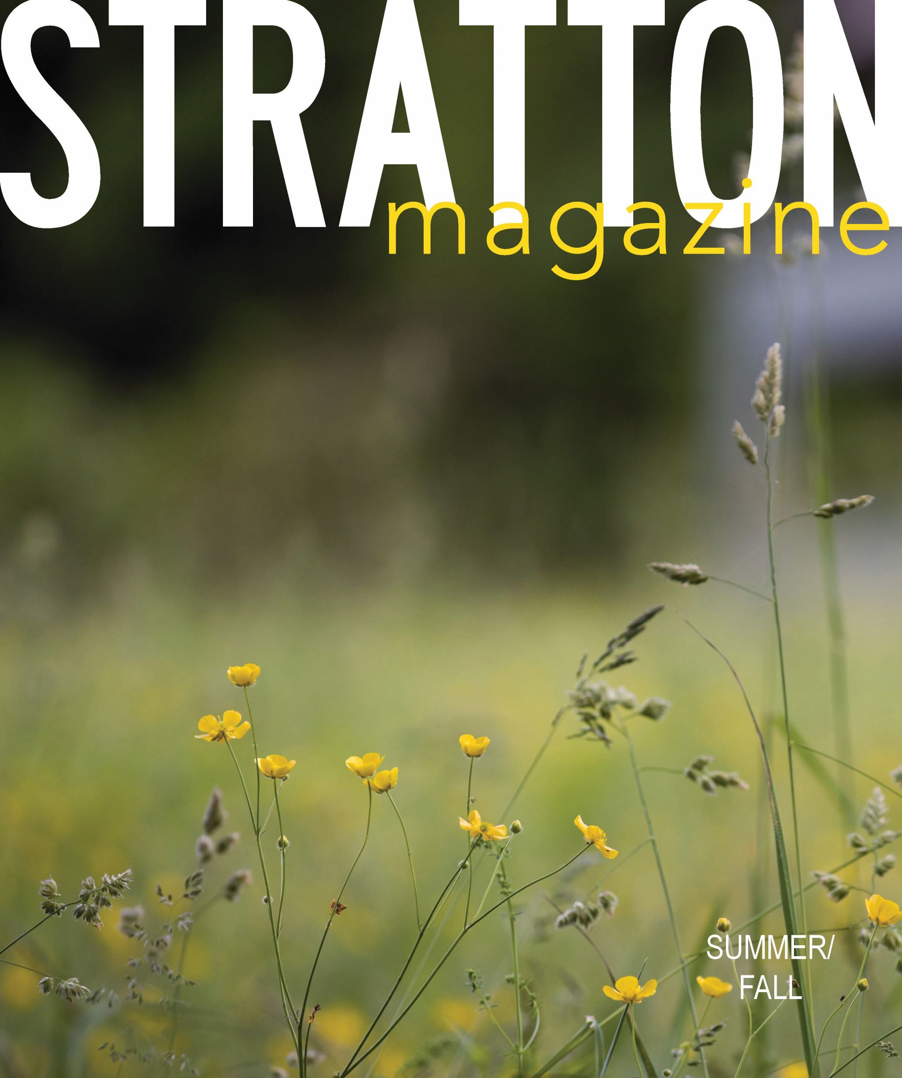 Stratton Summer Cover 20